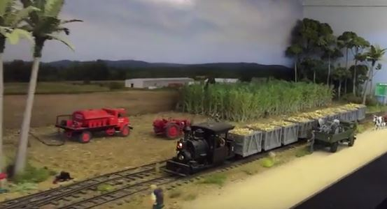 sugar cane train queensland australia